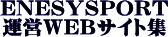 (ソフト工務店) エネシスポート 運営WEBサイト集〜オーソドックスで網羅的な運営サイト群の御案内